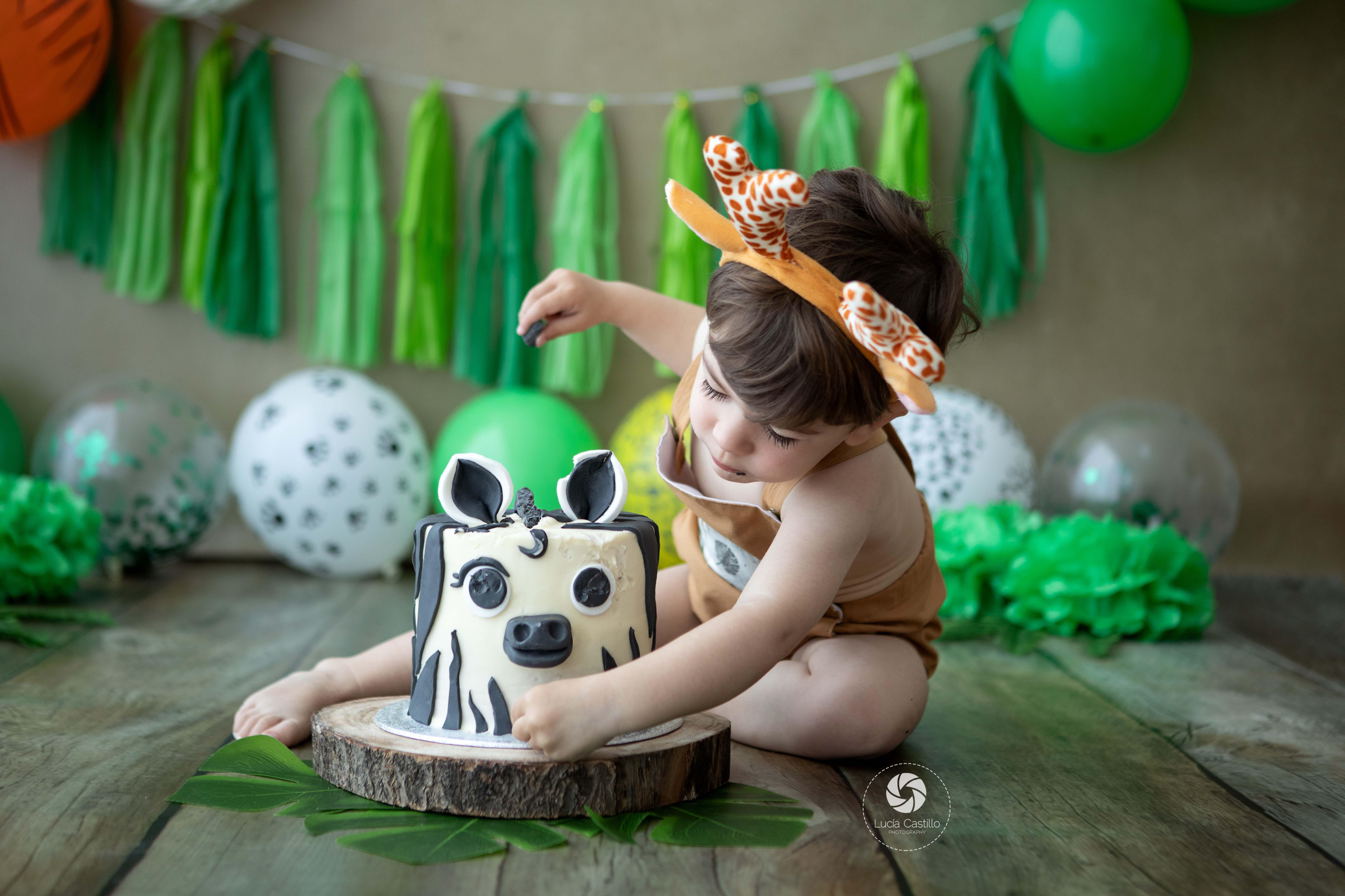 Smash Cake Temática