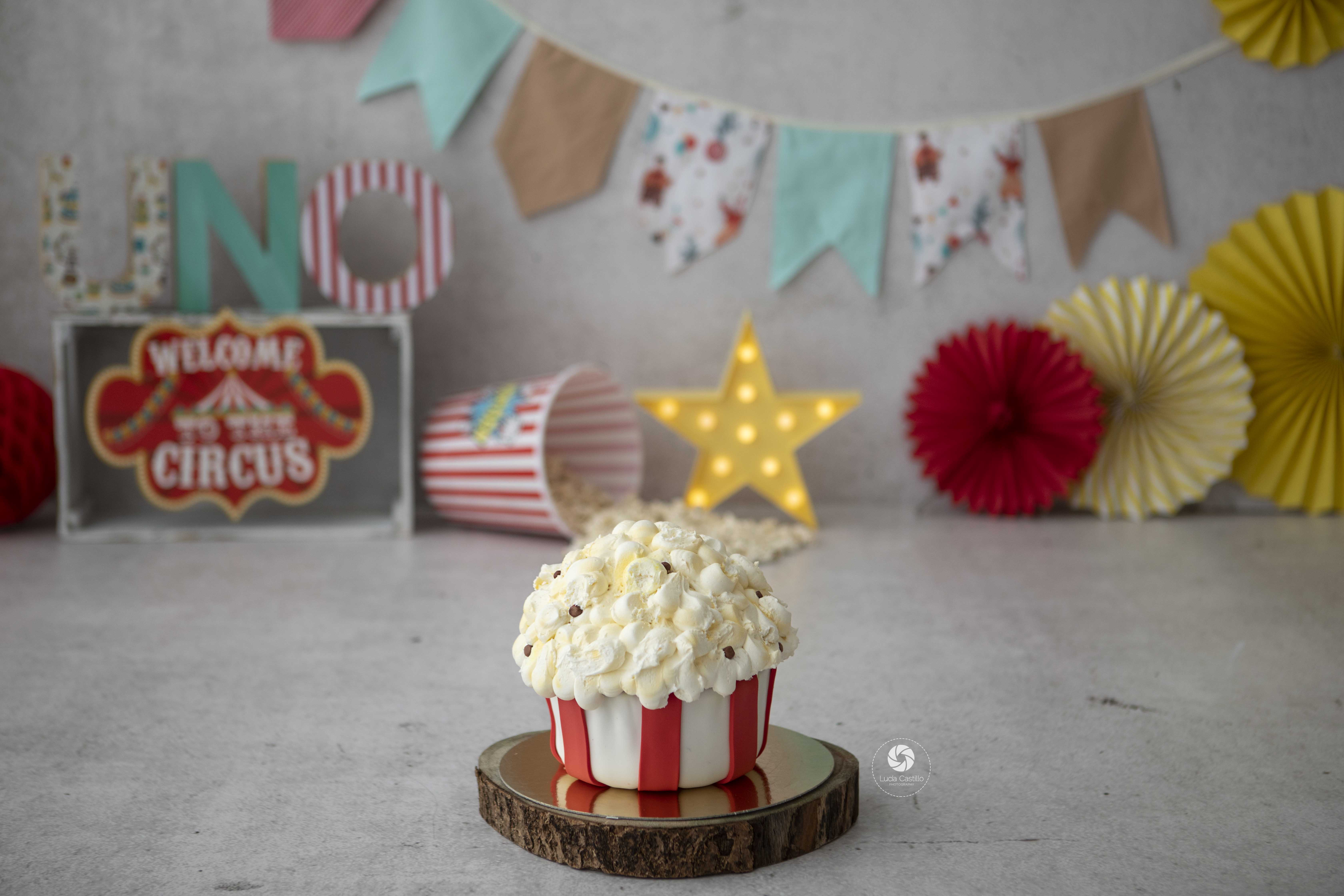 Smash Cake Temática Circo